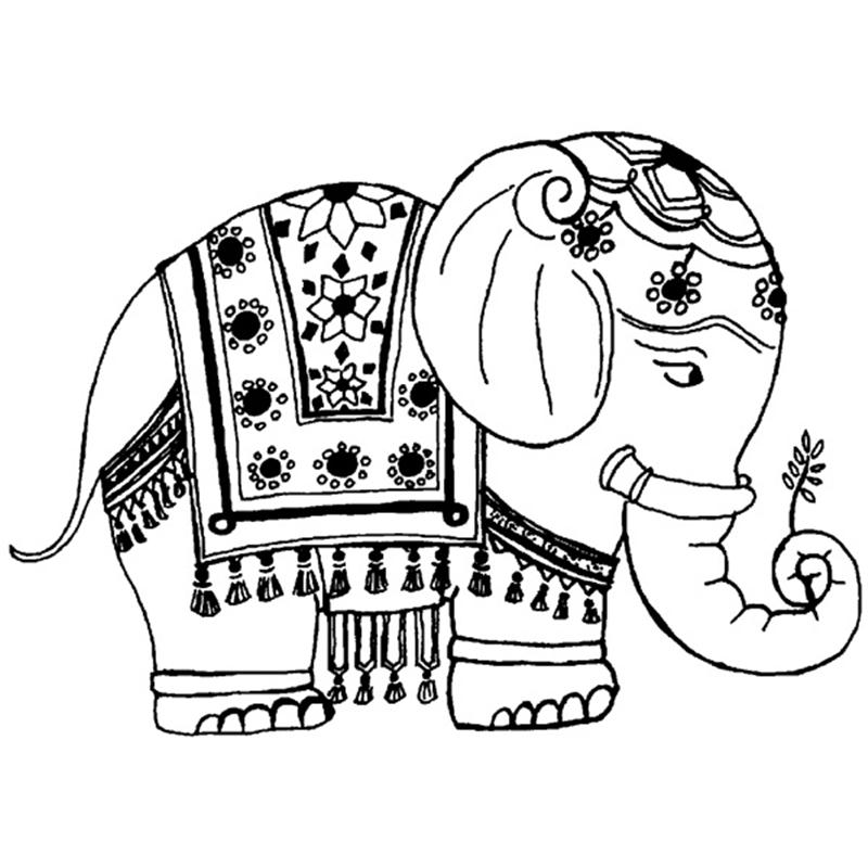 Indian Elephant Skh