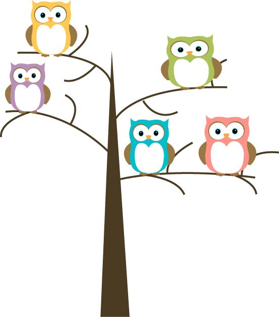 Owl Owls In A Tree Image Pretty Owls In