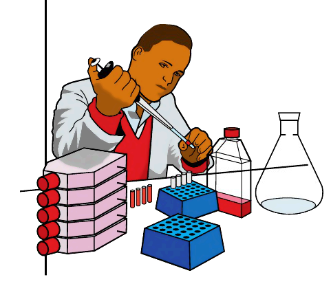 Science Experiment Clipart - Clipartion.com