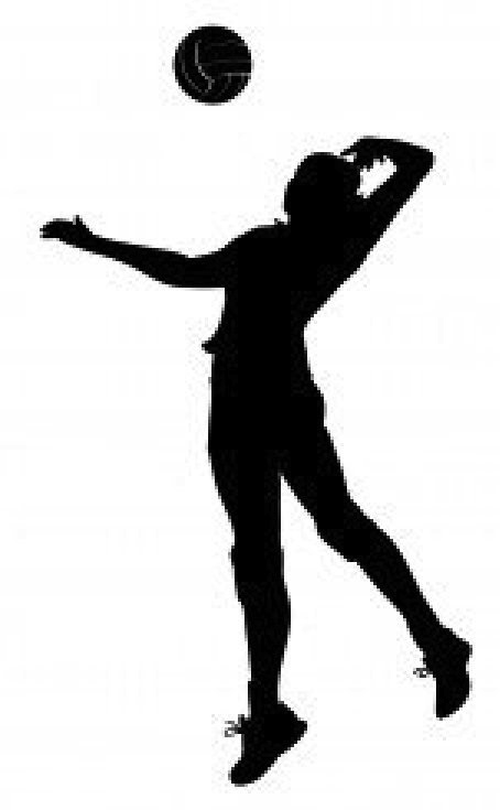 Best Volleyball Player Silhouette Clipat 28321 Clipartion Com