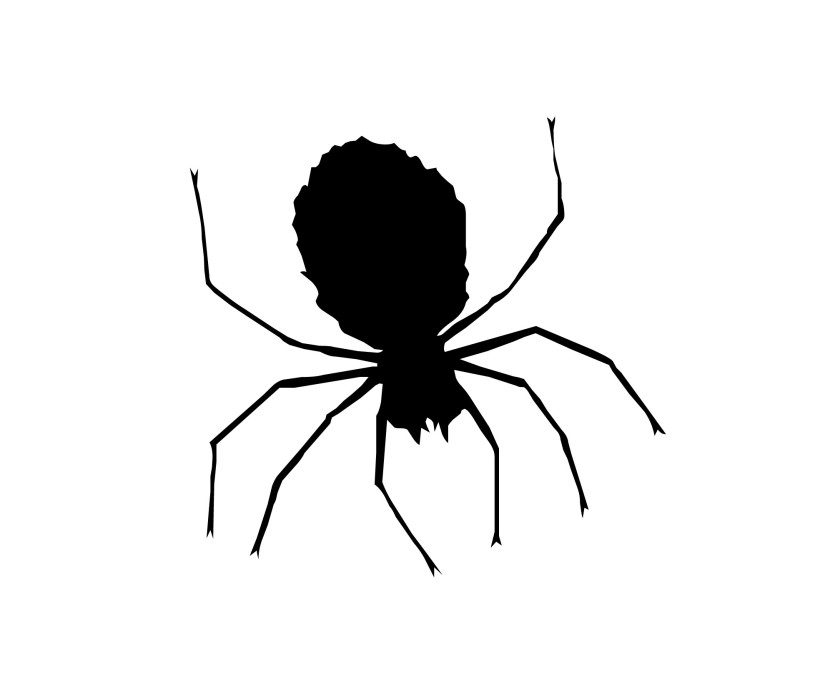 Cute Spider Clip Art