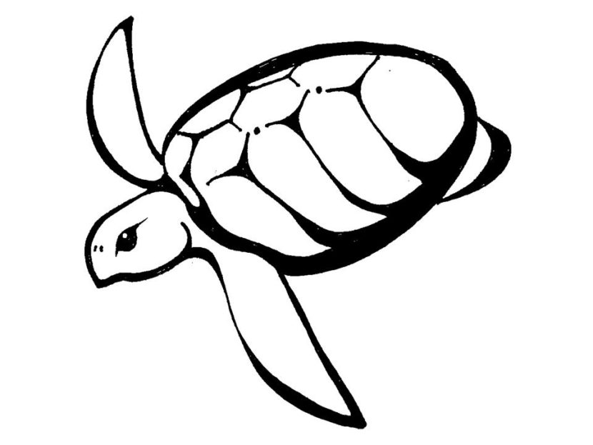 Free Of Hawaiian Turtle Clipart Best Hawaiian Sea