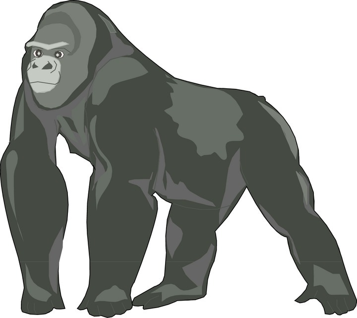 Gorilla Black And White Clipart