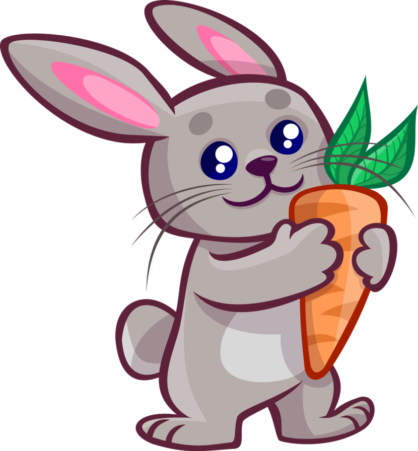 Bunny Clipart Bunny Images