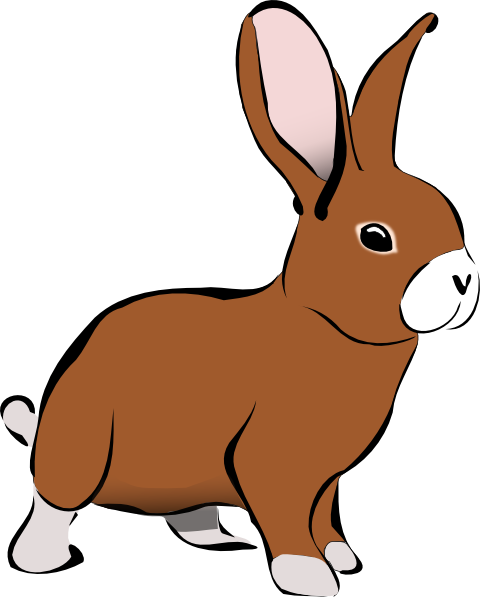 Bunny Clipart Transparent