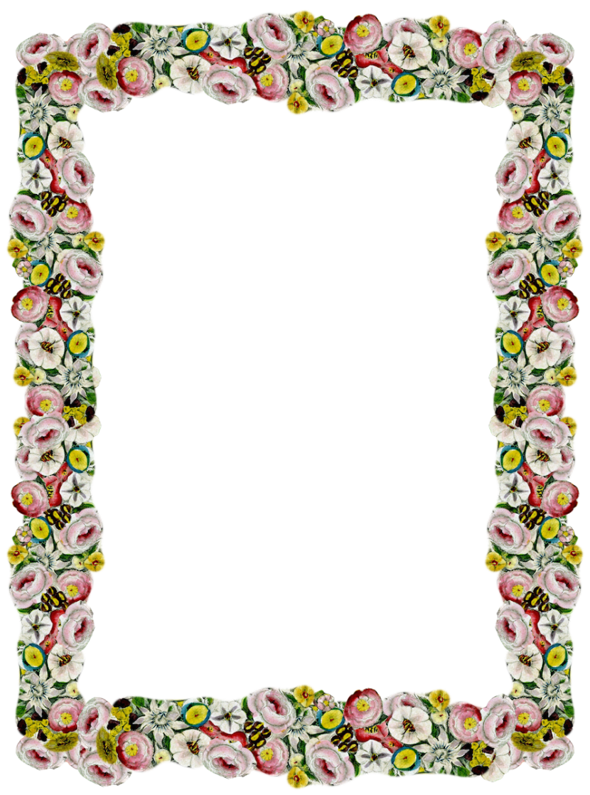 Free Digital Vintage Flower Frame And Border Png Blumenrahmen